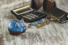 Polish zloty with little wallets, piggy bank and calculator on the wooden background Royalty Free Stock Images