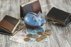 Polish zloty with little wallets and piggy bank on the wooden background Stock Image