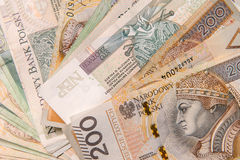 Polish zloty in notes and coins Stock Image