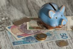 Polish zloty and piggy bank on the wooden background stock photo