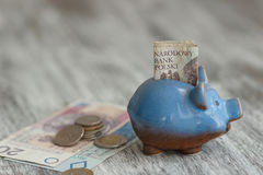 Polish zloty and piggy bank on the wooden background Stock Image