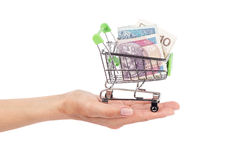Polish zloty in the shopping pushcart on woman`s palm, isolated Stock Images