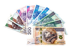 Polish złoty on a white background. Stock Images