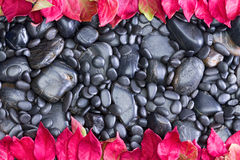 Polished Black River Rocks Bordered by Red Leaves Royalty Free Stock Photography