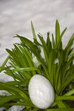 CRYSTAL EGG WITH SNOW BACKGROUND. Polished, egg shaped rock is nestled in a bed of green bluebell leaves Royalty Free Stock Images