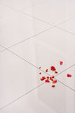 Polished floor gress. Polished floor tiles and red petals Stock Photo
