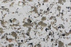 Polished granite tile Royalty Free Stock Photo