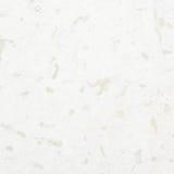 Polished limestone fragment Stock Photo