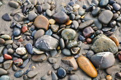 Polished Pebbles. Rocks along a Beach in Northern California Royalty Free Stock Photography