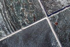 Polished quartzite tile flooring Stock Photo
