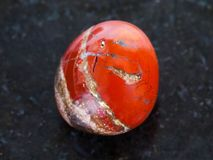 Polished red Jasper gem stone on dark background Stock Images