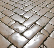 Polished street cobblestones Stock Images