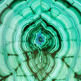 Polished surface of malachite mineral gem stone Stock Images
