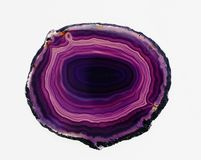 Polished translucent slice of banded purple agate Stock Images