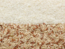 Polished and unpolished rice Royalty Free Stock Photos