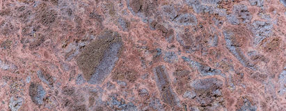 Polished volcanic basalt stone wall as texture Stock Images