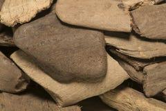 Polished wood sea Stock Photography
