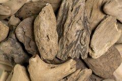 Polished wood sea Stock Images