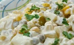 Polissez la salade végétale photo stock