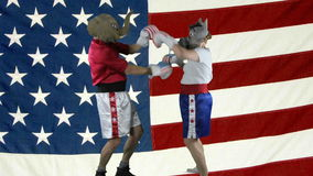 Political parties boxing against American Flag stock video