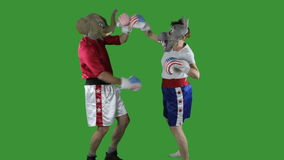 Political parties boxing. Man in elephant GOP mask and woman in donkey Democrat mask wearing boxing shorts  throwing punches against  a green screen stock video