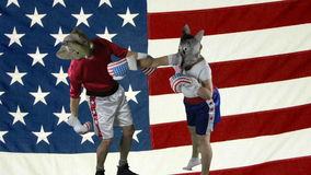 Political party knock-out against American Flag. Woman in donkey Democrat mask wearing boxing shorts delivering a knock-out punch to a man wearing a GOP elephant stock footage