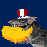 Political Rat Royalty Free Stock Images