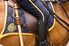 Politie en paard in New York Stock Afbeelding