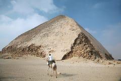 Politie in kameel Stock Foto