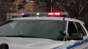 Politie lichte bar in hd stock videobeelden