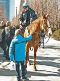 Politie op Paard - I Royalty-vrije Stock Afbeeldingen
