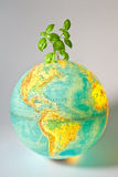 Politique environnementale Photo libre de droits