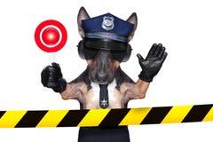Polizei-Hund Stockfotografie