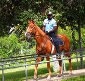 Polizei zu Pferd in Loule Portugal lizenzfreie stockfotos