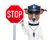 Polizeihund Stockbild