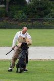 Polizeihundekonkurrenz Lizenzfreie Stockfotografie