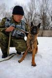 Polizeihundetraining Lizenzfreies Stockbild