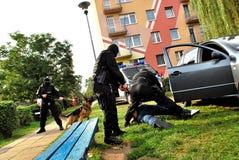 polizia Immagini Stock