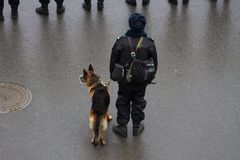 Polizia e cani russi sul marzo oppositivo Fotografia Stock