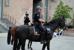 Polizia montata norvegese Immagine Stock