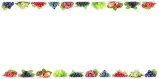 Poliziotto organico di frutti della bacca dei mirtilli dell'uva delle fragole delle bacche Immagini Stock Libere da Diritti