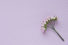 Polka dot background. Pink decorative flowers. Close-up. Place for text.  royalty free stock image