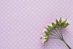 Polka dot background. Pink decorative flowers. Close-up. Place for text.  stock image