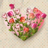 Polka dot background with Roses. EPS 10. Roses on a vintage polka dot background. Floral frame in a shape of heart. EPS 10 vector file included Stock Photos