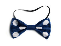 Polka-dot bow tie. Clown bow tie of polka-dot fabric Stock Image