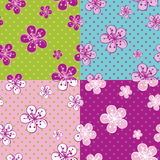 Polka dot Cherry Flowers background.Spring Seamles Stock Images