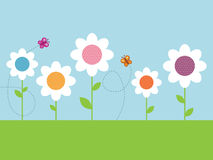 Polka dot daisies. Garden of polka dot daisies with butterflies Stock Photography