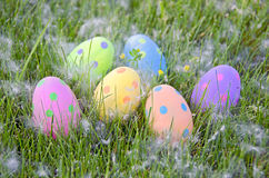 Polka dot Easter eggs Stock Photos