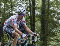 Polka Dot Jersey - Tony Martin Stock Photography