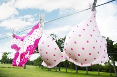 Polka Dot Lingerie on Line Stock Images